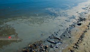 Белая пленка на реке Обь