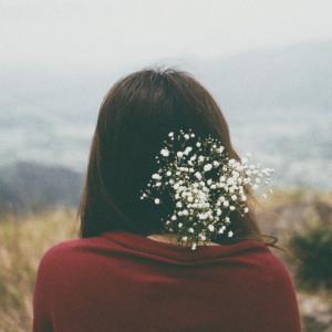 Горы, цветы.