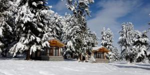 Снег на Семинском перевале.