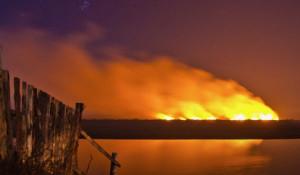 Пожар на острове в районе Камня-на-Оби.