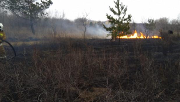 Возгорание возле села Шадрино.