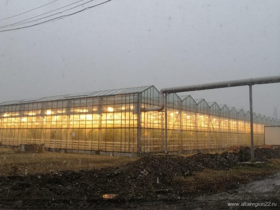 Тепличный комплекс «Индустриальный».