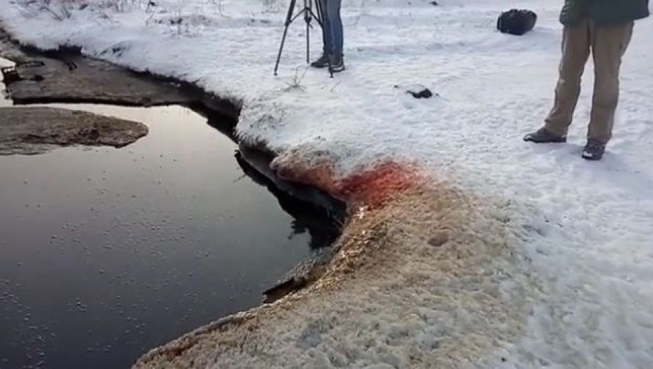 """""""Кровавое озеро"""" в Омской области."""