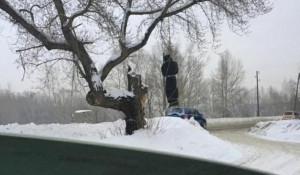 Бийчан напугал висящий на дереве мешок