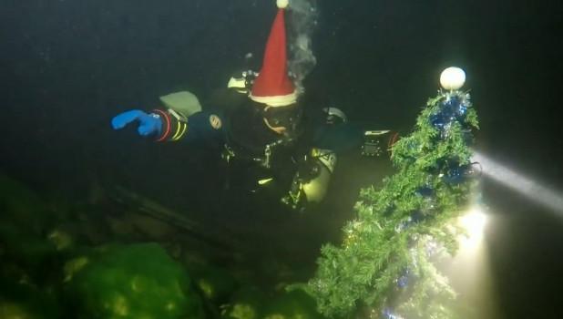 Елочка под водой.