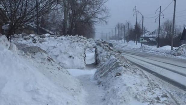 Жители Бийска прокопали ворота в гигантском сугробе на тротуаре.