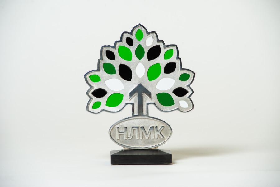 В Заринске стартуют проекты грантовой программы НЛМК «Стальное дерево».