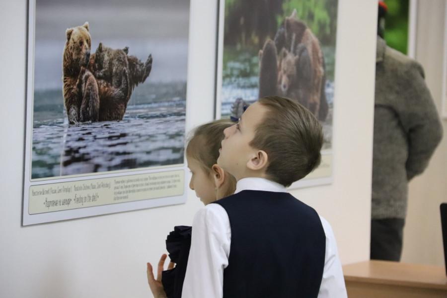 Материнство в дикой природе