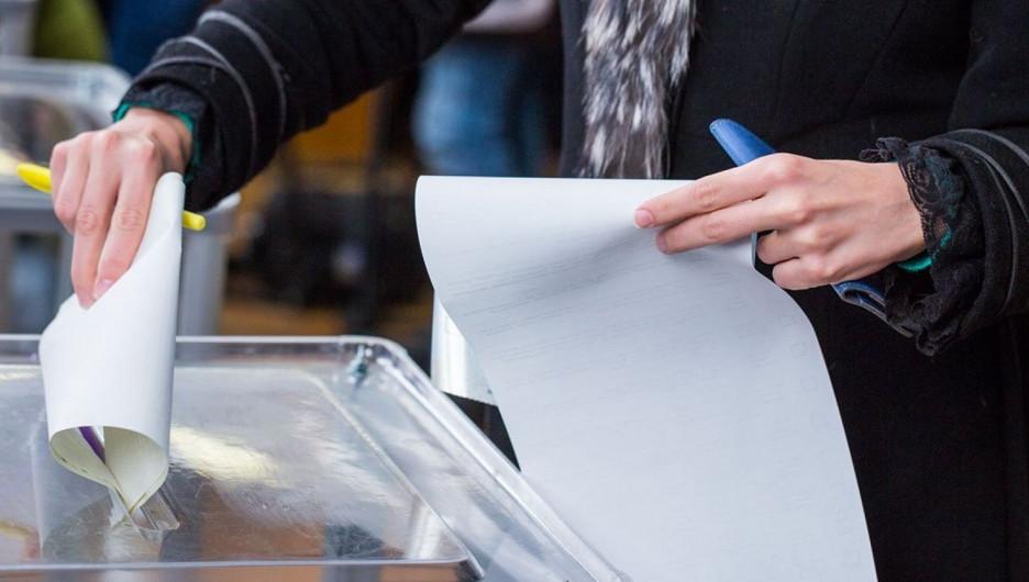 Все - на выборы. Голосование за нового мэра Барнаула на виртуальном участке Altapress.ru