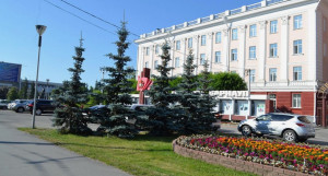 Озеленение в Барнауле. Красиво, но дорого.