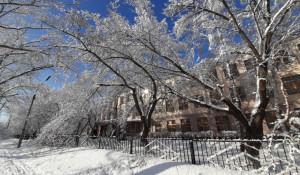 Сквер перед школой в Новоалтайске.