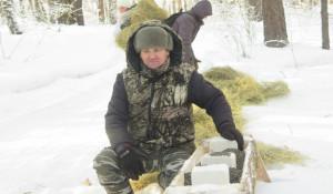 Установка дополнительных кормушек для лесных животных.
