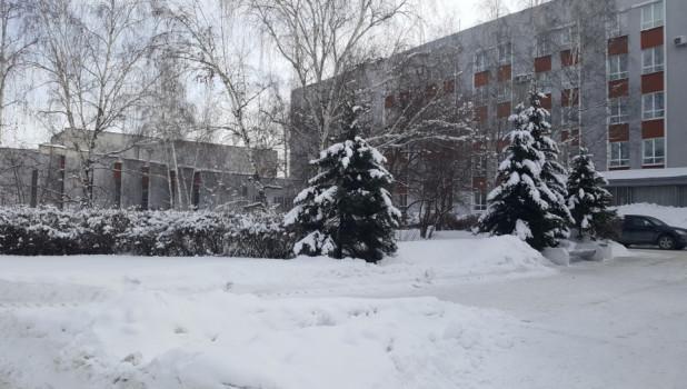 """Сквер у корпуса """"Д"""" АлтГУ."""