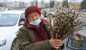 Продажа вербы в Барнауле.