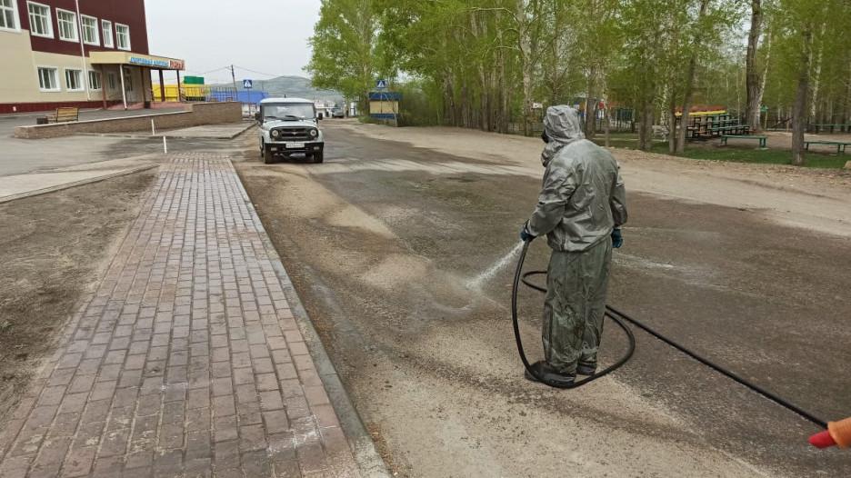 Санитарная обработка Змеиногорска.