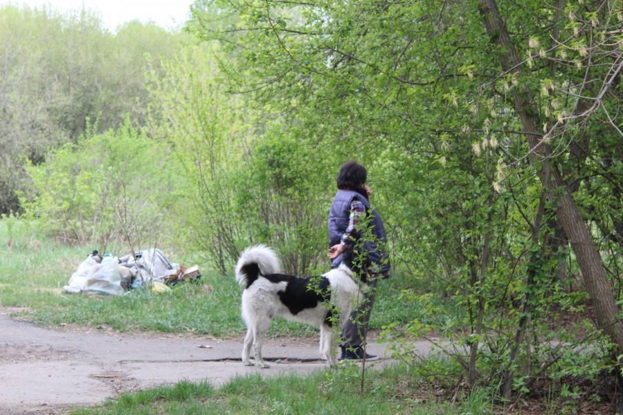 "Парк ""Юбилейный"" в Барнауле."