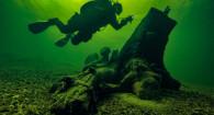 Ночная жизнь на глубине Телецкого озера.