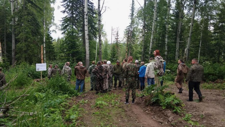 Семинар о восстановлении леса после сплошных рубок.
