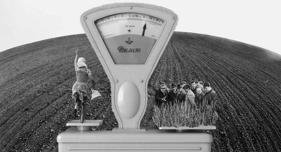 Весы-фермеры.