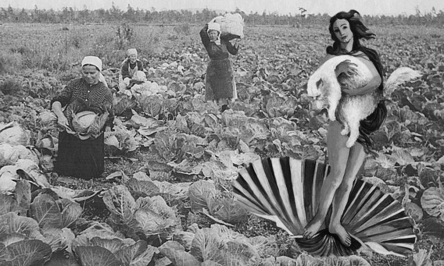 Дева-фермер.