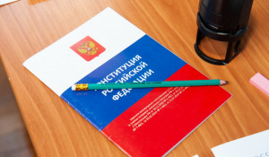 Общественные наблюдатели на голосовании по поправкам в Конституцию РФ.