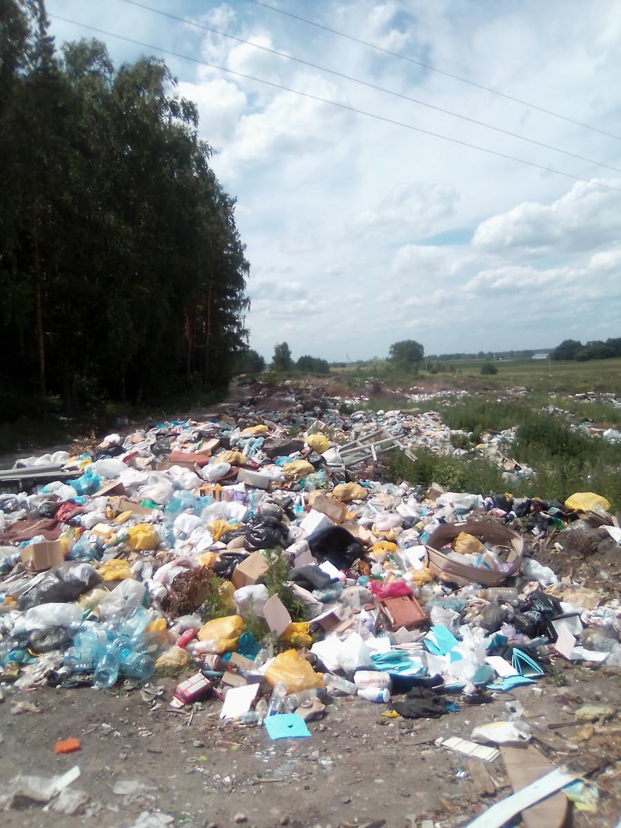 """Известная мусорная свалка у межпоселковой дороги в Бийском районе. В народе ее называют """"свалкой Серова - Попрядухина""""."""