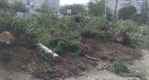 Вырубка деревьев на улице Исакова. Июль 2020 года.