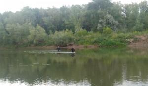 Водолазы на реке. Поиск пропавших.