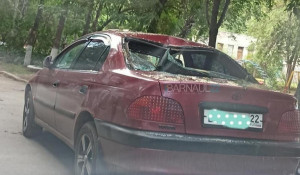 Дерево разбило три автомобиля в Барнауле.
