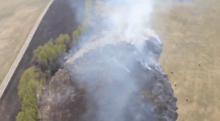 Пожары в Алтайском крае.