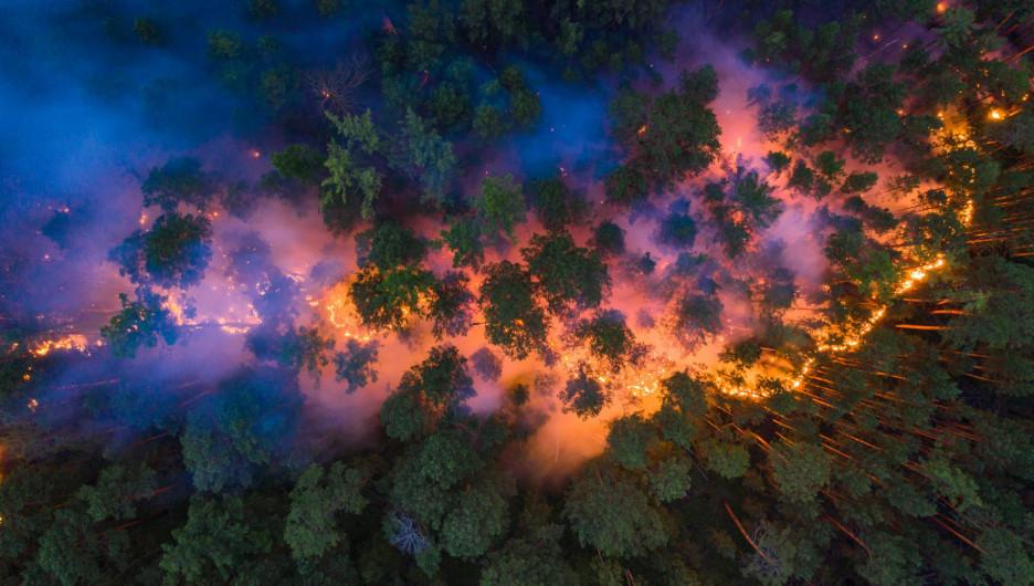 Лесной пожар в Красноярском крае.