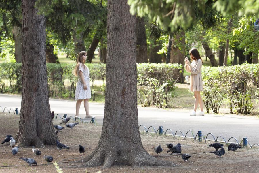 """Что происходит в барнаульском парке """"Изумрудный""""."""