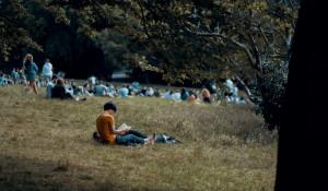 Отдых в парке. Зеленая зона. Сквер.