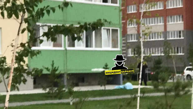 В Барнауле из окна выпал человек.