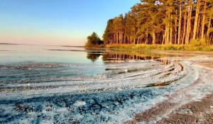Озеро Горькое-Перешеечное оказалось на грани катастрофы.