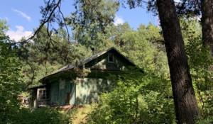 Домик в лесной глуши