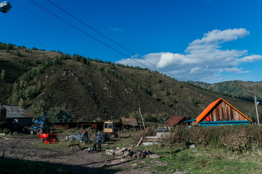 Маральник в Алтайском районе