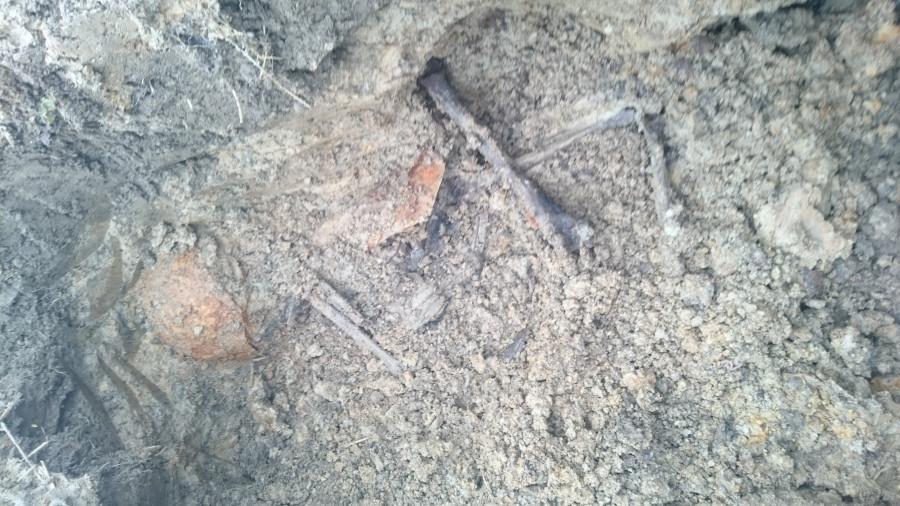 На раскопе у бывшего Эстонского поселка № 1.