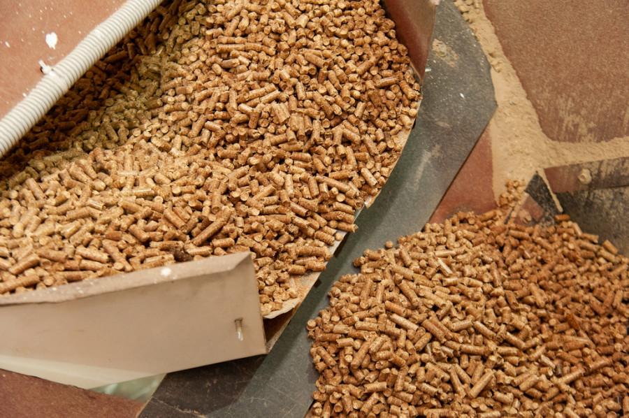 Производство топливных гранул (пеллет) в Заринске.