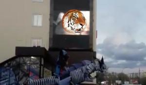 Порнографию транслировали на большом рекламном экране в Новосибирске.
