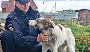 Омский полицейский спас собаку.