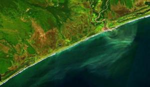 Загрязненный участок океана на Камчатке.