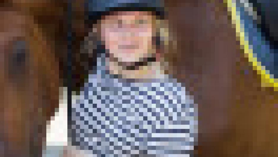 Общение с лошадьми.