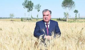 Эмомали Рахмон, президентТаджикистана.