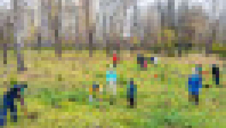Холдинг «Алтайлес» взял шефство над участком парка «Изумрудный» в Барнауле