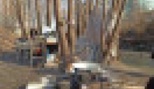 Мужчина 4 месяца живет на берегу Барнаулки.
