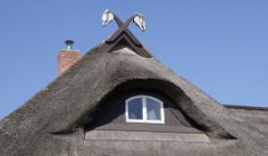 Необычные крыши.