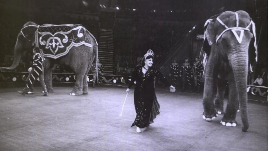 Тереза Дурова на арене цирка.