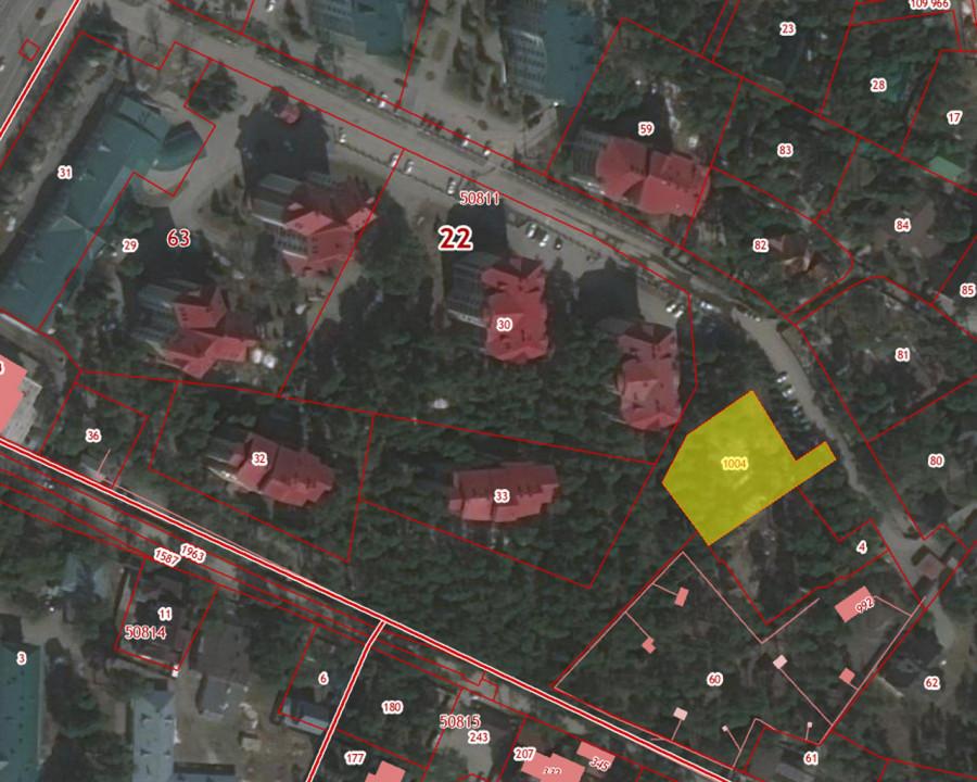 Фрагмент публичной кадастровой карты (желтым выделен участок, отданный Елене Гладышевой).