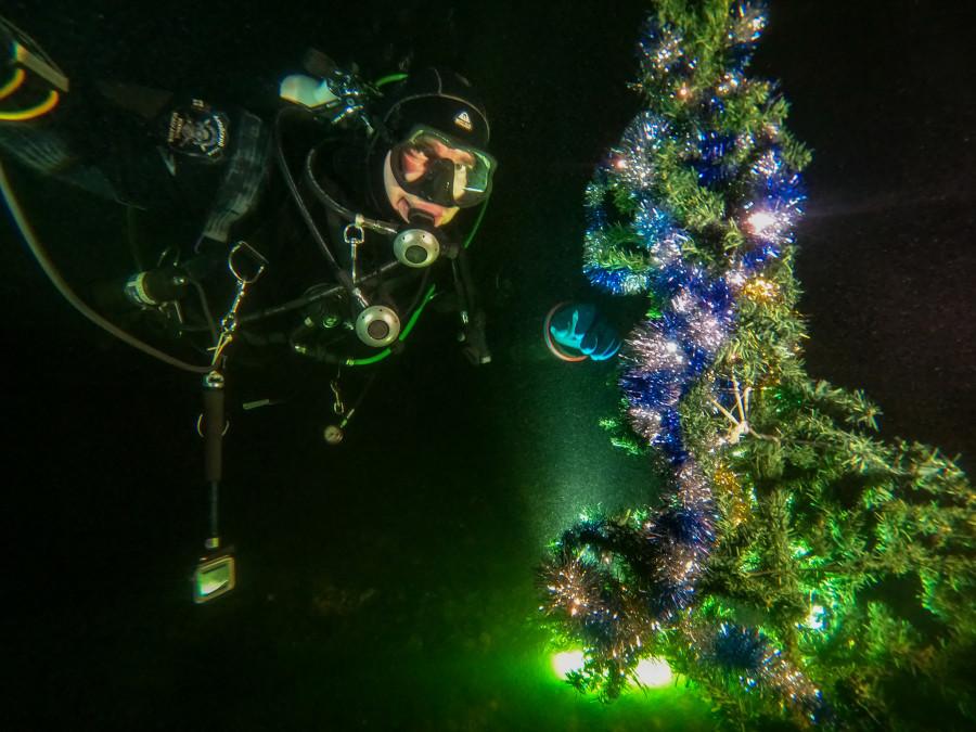 Новогоднее погружение в воды Телецкого озера.